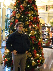 """it's a dangerous christmas • <a style=""""font-size:0.8em;"""" href=""""http://www.flickr.com/photos/70272381@N00/343482675/"""" target=""""_blank"""">View on Flickr</a>"""