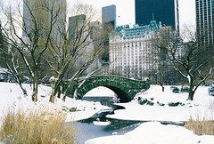 Central_Park_Bridge_1286_web