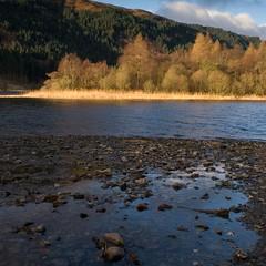 (dabi) Tags: landscape scotland trossachs lochchon