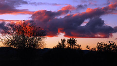 Cloud Rhapsody (BlueOakPhotos) Tags: california county sunset sky silhouette colorful centralvalley sacramentovalley yolo blueoakphotos