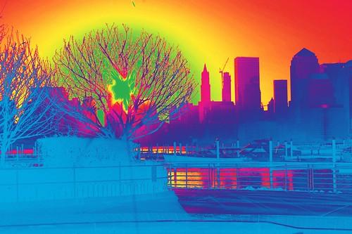 sun-tree-spect.jpg