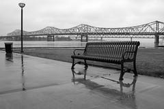 Walkin' in the Rain (Daniel Light) Tags: blackandwhite oneaday bridges photoaday louisville pictureaday project365 lonelybench project365011307 johnfkennedybridge