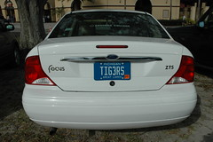 Tigers License Plate