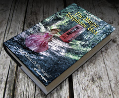 The Magic Telephone Box (Matt West) Tags: pink red book woods princess magic barbie story paintshoppro telephonebox k6 phoney