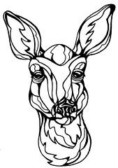 Deer (sammo371) Tags: art illustration wildlife deer sammo linearts artillustrationlineartwildlife lineartwork lineartimages