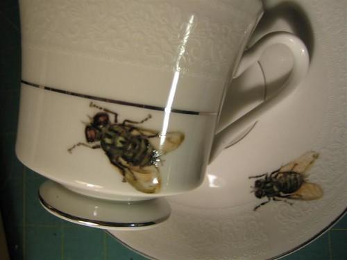 Housefly teacup