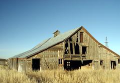 J.G. Evans Barn 03 (SnoShuu) Tags: abandoned barn colorado rustic blackforest canon30d elpasocounty jgevans snoshuu lensefs1785mmf45f56isusm