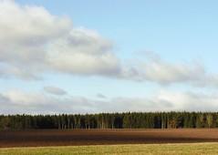 Like a cake (:Linda:) Tags: shadow sky cloud field forest germany woods village wolke thuringia soil landschaft schatten baum veilsdorf cloudysky frhling erde wolkig frhjahr erdboden bewlkterhimmel erdreich ackerboden autumnallandscape landschaftimherbst herbstlichelandschaft
