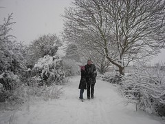 Snow on Begbroke Lane