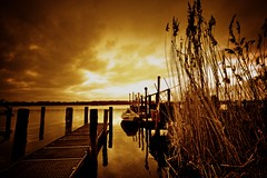 golden evening at werder (gari.baldi) Tags: sunset sky reflection reed water germany golden evening harbor boat lomo harbour wideangle glowing garibaldi brandenburg hdr orton cattail 2007 paperwall werder sigma1020 superhearts