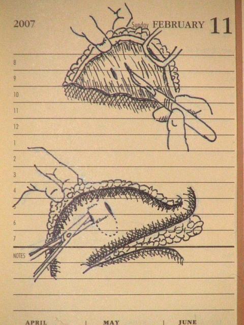 Sketch 021107