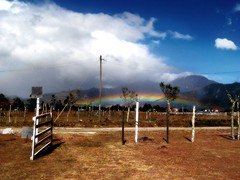 puertas abiertas (wakalani) Tags: summer sky mountains tree grass arcoiris rural fence volcano rainbow puerta doors open side country olympus cerca baru montaas volcan chiriqui wakalani