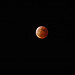 Lunar Eclipse: March 4th