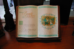 Beauty and the Beast book (CharacterHunters) Tags: epcot waltdisneyworldchristmas