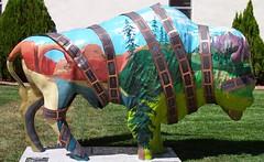 A Painted Wood Buffalo (Gila Trout) Tags: woodbuffalo paintedbuffalo