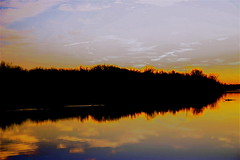 Very Saturated!!! (mightyquinninwky) Tags: trees sky water clouds reflections evening december kentucky lexingtonky richmondroad fayettecounty centralkentucky ellserlielake
