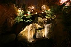 IMG_0276 (rwike77) Tags: lights bellevuebotanicalgardens gardendlights digitalrebelxti