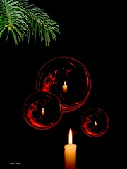 Nol !!! (Michel Craipeau) Tags: christmas b red black france reflection green natal composition canon weihnachten rouge navidad photo europe noir candgleam social 2006 noel vert frenchpoetry reflet nol michel merrychristmas flamme magical reflets 1000 sapin boule papai 2012 bougie 1000views ornement joyeux iloveit magique pome powershotpro1 10000views joyeuxnol  craipeau 25faves craipeaumichel challengeyou challengeyouwinner b2006 abigfave abigfav dfidfiouiner nstantfave impressedbeauty   flickr10 bachspicsgallery  flickrestrellas magicalchristmas