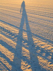 Giacometti on the beach (cyanocorax) Tags: california shadow santabarbara sunrise sand gull tracks 3waychallenge