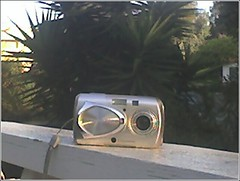 My sweet, dead little Olympus camera