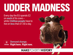 Udder madness (net_efekt) Tags: poverty red festival poster design kuh cow milk cattle cows graphic banner glastonbury grafik fair madness makepovertyhistory dairy trade campaign mph milking fairtrade oxfam udder maketradefair uddermadness demandchange gentechnikfrei organicandgmofreeworld sansogmnoquierotransgenicosgmofreeorganic