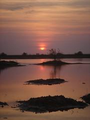 Atardecer en Djoudj (EConde) Tags: africa park viaje parque lake lago atardecer dusk aves senegal nacional djoudj