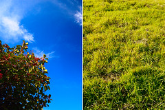 Hi. How Are You? (Ryan Fernandez) Tags: color tag3 taggedout saturated diptych tag2 tag1 wideangle complimentary canon30d sigma1020 p1f1