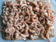 Fischerfrühstück mit Krabben 005