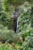 Hana Highway Waterfall.