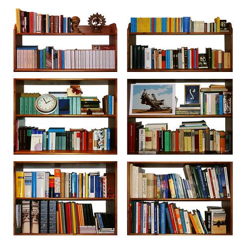 Bookshelf #5