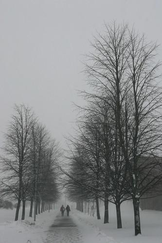 Snowfall Continuance
