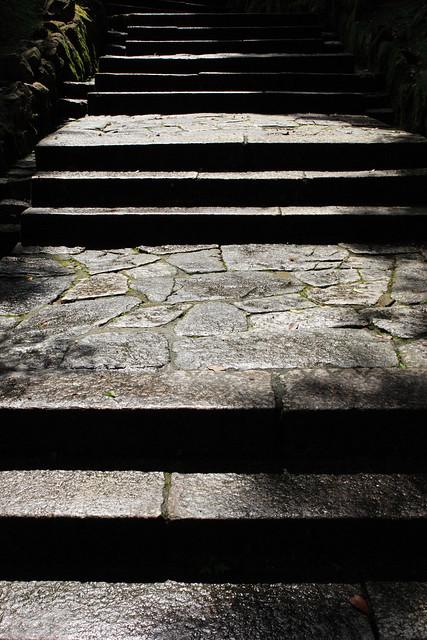 雨上がりの石段