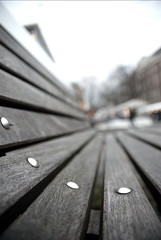 Public Wooden Couch on the Spui // Amsterdam