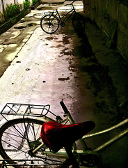 Bizarre Love Triangle (Arielynn) Tags: red 3 bicycle dramatic frente m50 bizarrelovetriangle sheheandhe