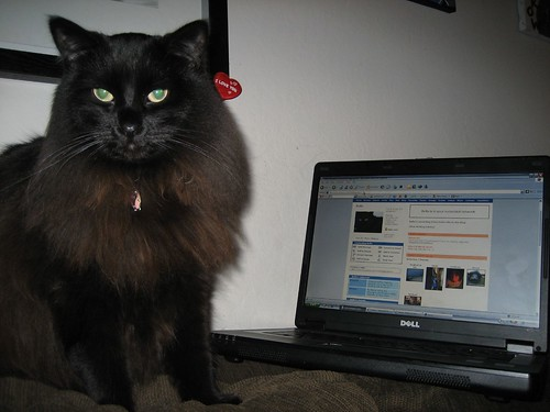 Bella's checking her Myspace comments