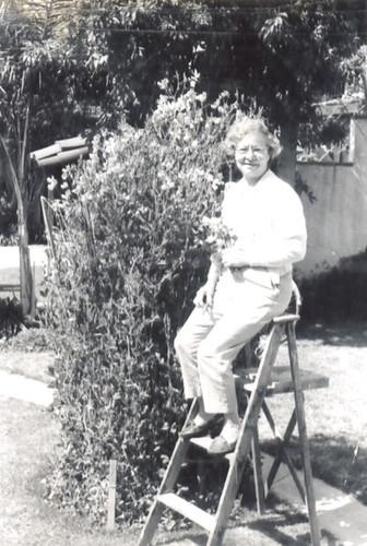 Nanny's Garden