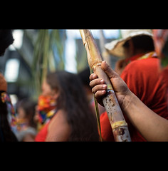ethanol power ( Tatiana Cardeal) Tags: pictures brazil people brasil digital photo women saopaulo sopaulo protest picture brazilian tatianacardeal antibush 2007 brsil sugarcane socialchange inequality worldmarchofwomen protesto ethanol desigualdade socialmovement etanol marchamundialdasmulheres unitedwomen wmbslide