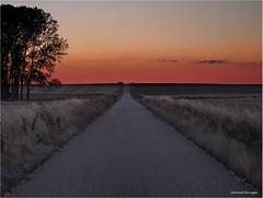 El Ocaso (Manuel Moraga) Tags: manuelmoraga elocaso atardecer anochecer naturaleza carretera sanllorentedelpáramo palencia castillayleón españa spain