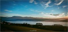 Lake Sempach (Hanspeter Ryser) Tags: sempachersee lake color colored skywasser abend vogelang swiss switzerland sonenuntergan sunset europa sonnenschein hanspeterryser