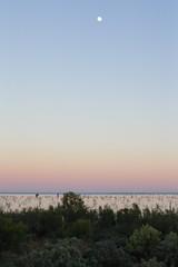 2016.11.17.05.21.51-Menindee Lake before dawn (www.davidmolloyphotography.com) Tags: newsouthwales menindee kinchega kincheganationalpark lake dawn moon