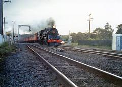 NZR 4-8-2 Ja 1250 Mercer Apr 1988 (TJM2012) Tags: newzealandrailways nzr steam hillside 482 ja 1250 mercer res railwayenthusiastssociety 1988