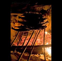 fire ( Tatiana Cardeal) Tags: travel brazil fish brasil digital documentary tatianacardeal par brsil amazonia amazonie amaznia documentaire piracaia flona documentario  jamaraqu florestanacionaldotapajs tapajsnationalforest projetosadeealegria healthandhappinessproject saudeealegria