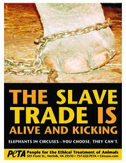 PETA (Slave Trade)