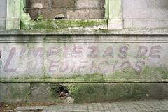 hoja (drl.) Tags: uruguay leaf irony montevideo canonae1 purgesurvivor purge537 romanticleaf