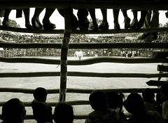 yucatan bullfight 2 (hanna.bi) Tags: travel bw mexico audience crowd yucatan arena bullfight 10faves borderingperception