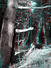 Tattoo Branch 3D Anaglyph (coronetv000) Tags: tattoo flesh three stereoscopic stereogram stereophotography crosseye woods branch with down anaglyph stereo hunter parallel dunwich redblue 3dglasses stereoscope dimensional fleshy stereocamera mylor crossview anaglifo redcyan anachrome fleshunter stereophotographic 3d at fleshy anáglifo felshy anaglifica