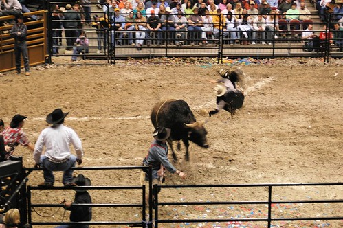 Cory Montana Davis - PCB Bull Riding