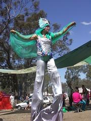 galactic surfer.JPG (Beautiful wwworld) Tags: party bush performance australia victoria psytrance stilts doof madhu rainbowserpent rsf2007 rainbowserpent2007