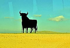 on the road by bus IX (_tonidelong) Tags: road españa de la spain carretera bull via plata ontheroad toro osborne n630 ibeauty
