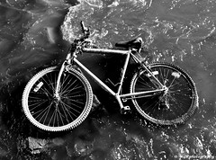 abandoned (Mike Wood Photography) Tags: bw abandoned leaves river eos 350d cage tires covered arr stolen bent stratford allrightsreserved silt waterbike knobby mikewood w4b w4bphotography mikewood invertedforks mikewoodphotographycom mikewoodphotography